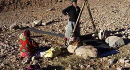 Bedouinen
